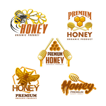 Honey organic beekeeping farm product icons templates. Vector isolated set of bee on flower blossom and honey in jars, honeycomb and dipper spoon with honey splash drops for packaging label design