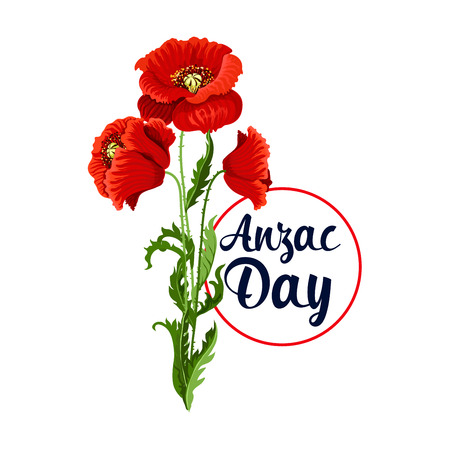 Anzac Day 25 April poppy bunch vector icon illustration. Illustration
