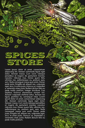 Vector sketch spices and herbs farm store poster