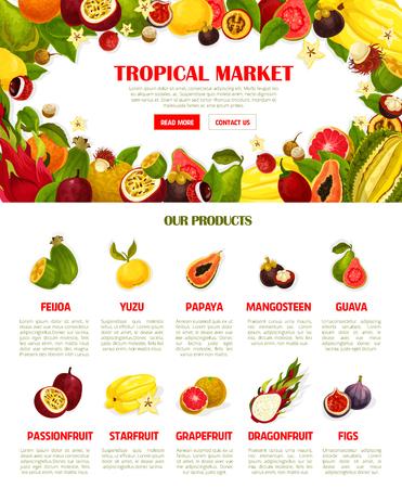 벡터 웹 템플릿 이국적인 신선한 열 대 과일 그림입니다.