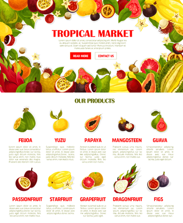 Vector web template exotic fresh tropical fruits illustration.