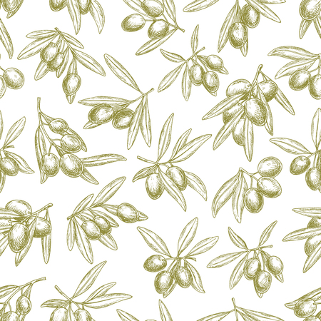 Olives branches on olive vector seamless pattern