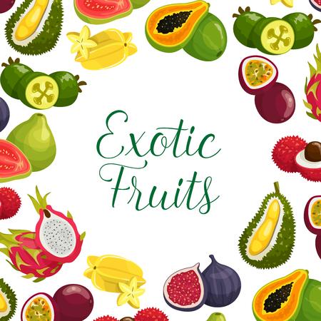 Vector poster van exotische verse tropische vruchten