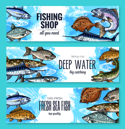 Fishing shop banners set of sea or ocean fishes. Vector sketch sea bass, marlin or tuna and navaga, horse mackerel, gilt-head bream or anchovy and eel, codfish and sardine for seafood or fish market Vettoriali