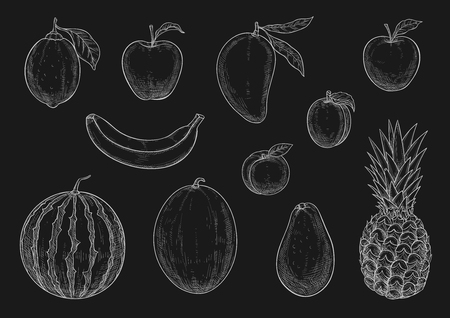 Fruits chalk sketch icons on chalkboard. Vector isolated set of lemon citrus, apple or pear and exotic pineapple, watermelon or melon and tropical kiwi or mango, farm harvest banana or peach and plum