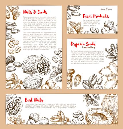 ナッツとフルーツの種子のベクトルスケッチポスター  イラスト・ベクター素材