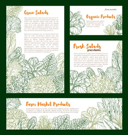 ベクトル新鮮な農場サラダ野菜スケッチポスター  イラスト・ベクター素材
