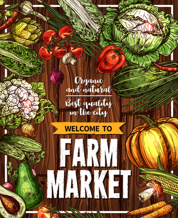Vector sketch vegetables farm market poster.