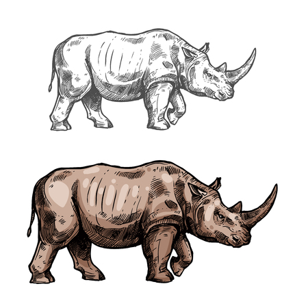 Rhinoceros vector sketch wild animal icon