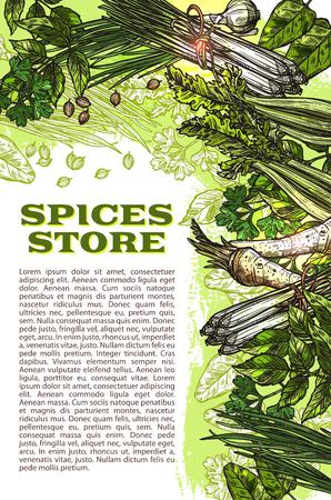 향신료 허브 조미료의 스케치 포스터 디자인 템플릿을 저장합니다. 벡터 유기 샐러리 또는 딜 및 바 질, 양 고추 냉이 및 오레가노 또는 파 슬 리 요리  일러스트