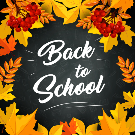 Back to School poster of autumn September leaves foliage of maple, rowan or oak and chestnut yellow leaf on school chalkboard or blackboard background. Vector design for education and study season.