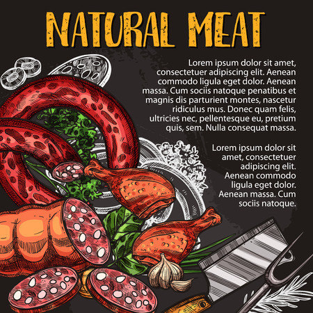 Natural meat and sausage chalkboard poster with fresh farm product. Pork sausage, salami, chicken leg and smoked frankfurter chalk sketch on blackboard with spice herb and condiment for food design