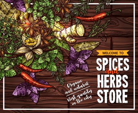 Spice en kruid schets poster op houten achtergrond.