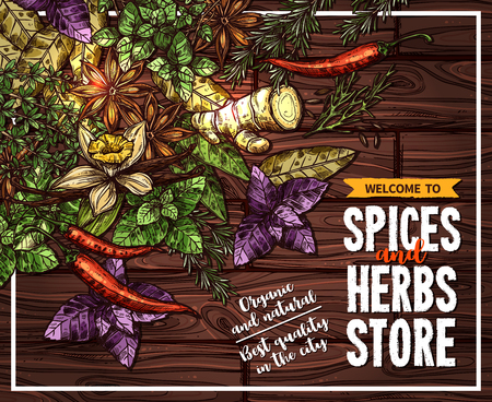 Spice and herb sketch poster on wooden background. Illustration