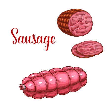 Vector sausage salami meat sketch icon