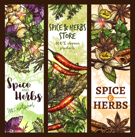 Vector sketch spices and herbs store banners Illustration
