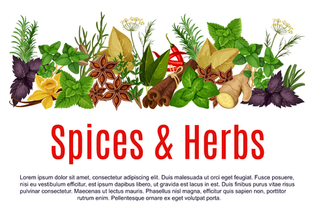 Vector spices and herbs farm store poster Standard-Bild - 95464663