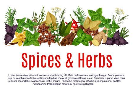 Wektor przyprawy i zioła farma sklep plakat