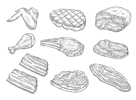 Vector sketch butchery meat chicken icons