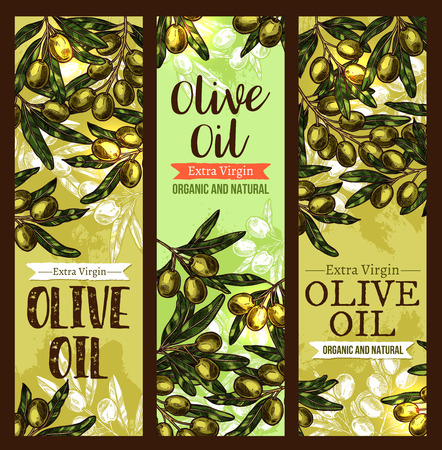 Vector olive oil extra virgin sketch banners