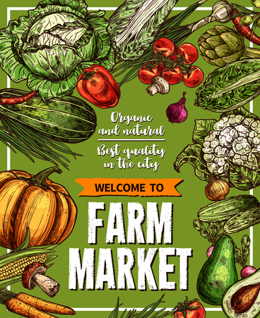 Vector sketch poster for farm market vegetables Illustration