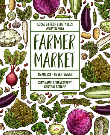Vegetables farmer market sketch poster. Vector design template of fresh veggies and natural farm organic radish or cauliflower and broccoli cabbage, zucchini squash or cucumber and carrot or tomato Illusztráció