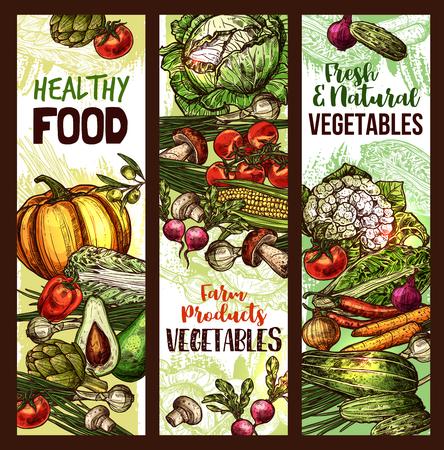 Vector Gemüse und Veggie Skizze Banner Standard-Bild - 95525030