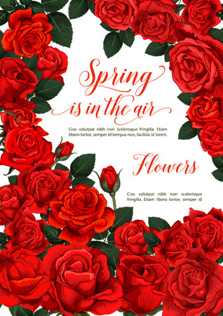 Vector spring roses, greeting card design