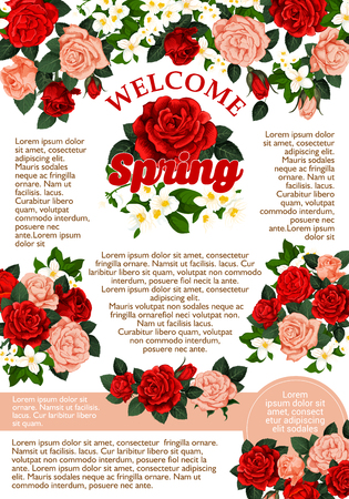 Welcome Spring poster of roses flowers bunch icon for spring time seasonal holiday greeting card wish. Vector floral bouquet of blooming red and pink roses flowers crocuses or lily blossoms Ilustração