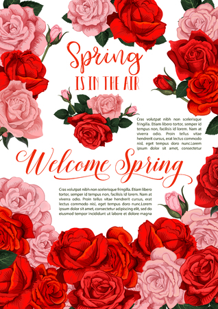 A Vector spring holiday flowers roses floral poster Illustration