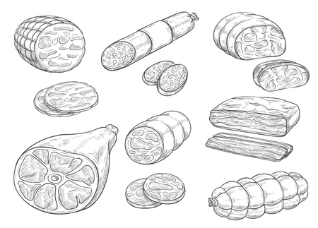 Vector sketch icon of meat and sausage products illustration.