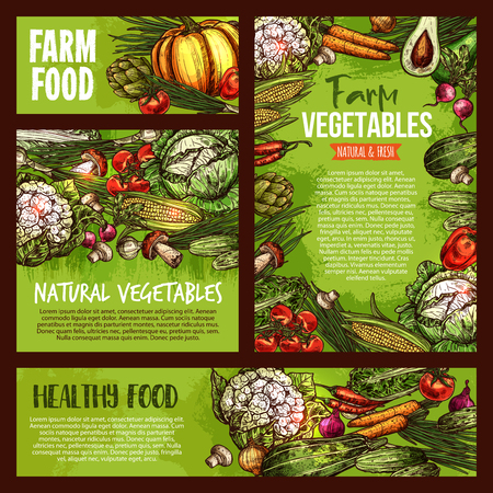 Vector vegetables veggie farm food sketch posters illustration.