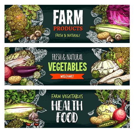Vector fresh organic vegetables sketch banners illustration. Çizim