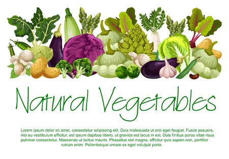 Vector natural vegetables organic food poster