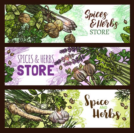 PIces et herbes ferme magasin de vecteur des herbes illustration Banque d'images - 97099181