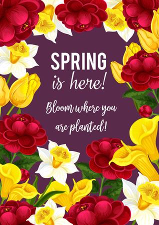 Spring time flowers seasonal vector greeting card illustration. Illustration