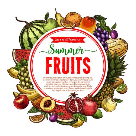 Vector sketch fruit store poster of farm fruits Illustration