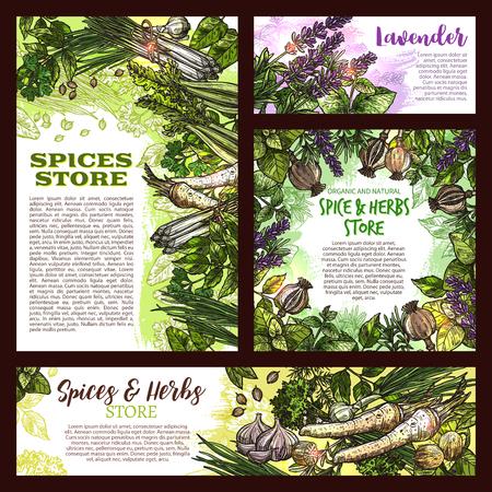 Spices store sketch posters of herbs set Zdjęcie Seryjne - 97642046