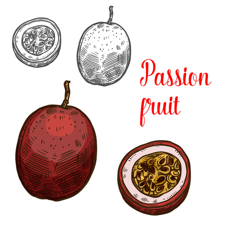 Passion fruit vector sketch icon set
