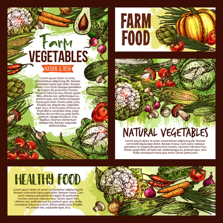 Vector natural vegetables food sketch posters