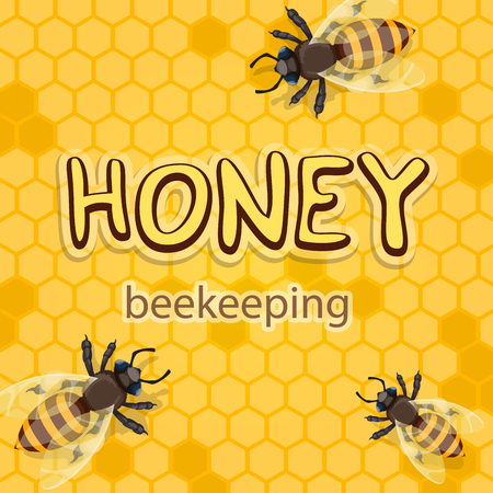 Honey product vector honeycomb poster