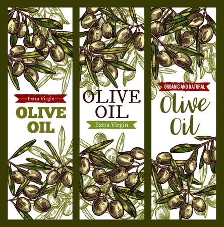 Vector olive oil extra vrigin sketch banners Иллюстрация