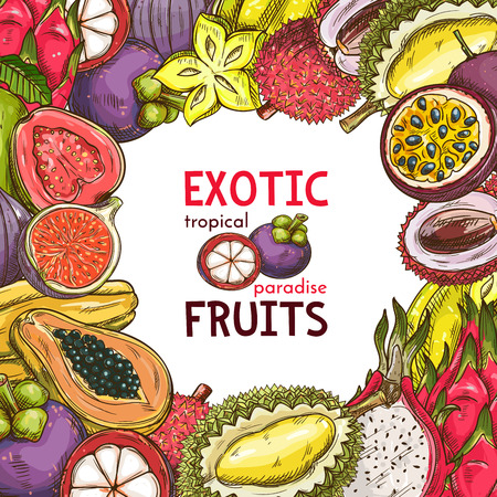 Vector sketch poster of exotic fruits
