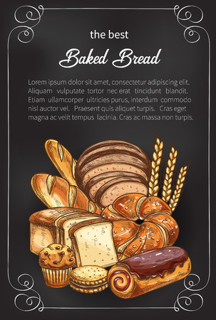 Vector bread sketch poster for bakery shop