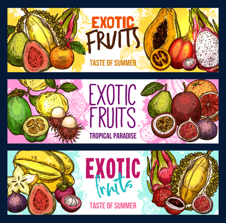 Vector fruit shop sketch banners of exotic fruits set Çizim