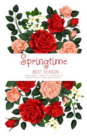 Springtime holiday flower greeting card of red and pink roses for spring tine seasonal quote. Vector spring time season flowers bunch of blooming garden roses and green leaf botanical design