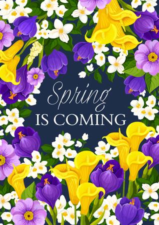 De lente komt eraan wenskaart van lente bloemen bos en seizoensgebonden vakantie wensen. Vectorontwerp van bloeiende calla lelie, krokussen en orchideeën of madeliefjebloesems