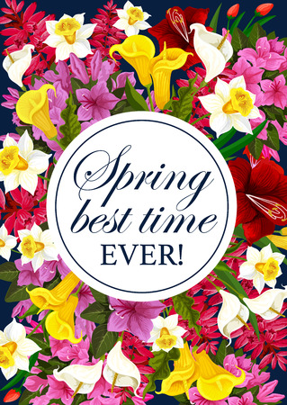 Vector springtime floral greeting flowers poster Çizim