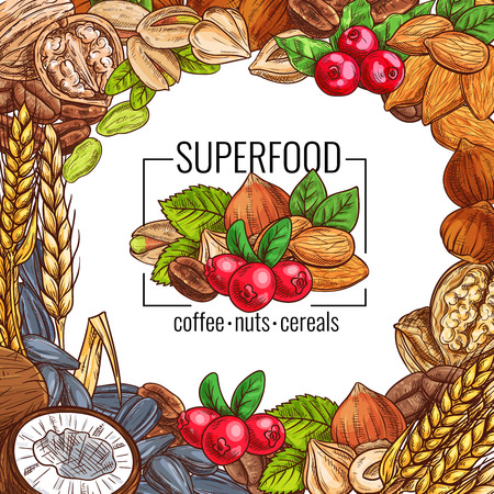 Superfood poster with nut, cereal, seed and bean