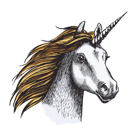 Unicorn with long horn and golden mane isolated sketch. Horned horse head of fairy animal or magic creation for tattoo, t-shirt print or medieval heraldry design Banque d'images - 99637605